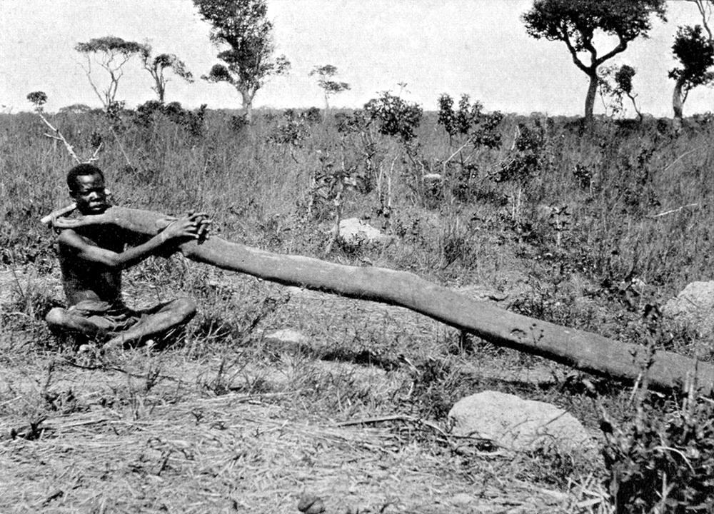 Плененный африканец с дерневянным хомутом на шее (Восточная Африка, 1882 год)