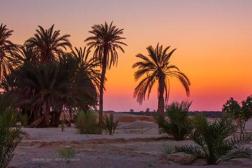 Закат в Сахаре