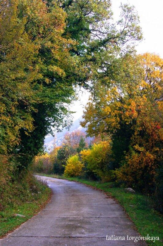 Дорога в Морине