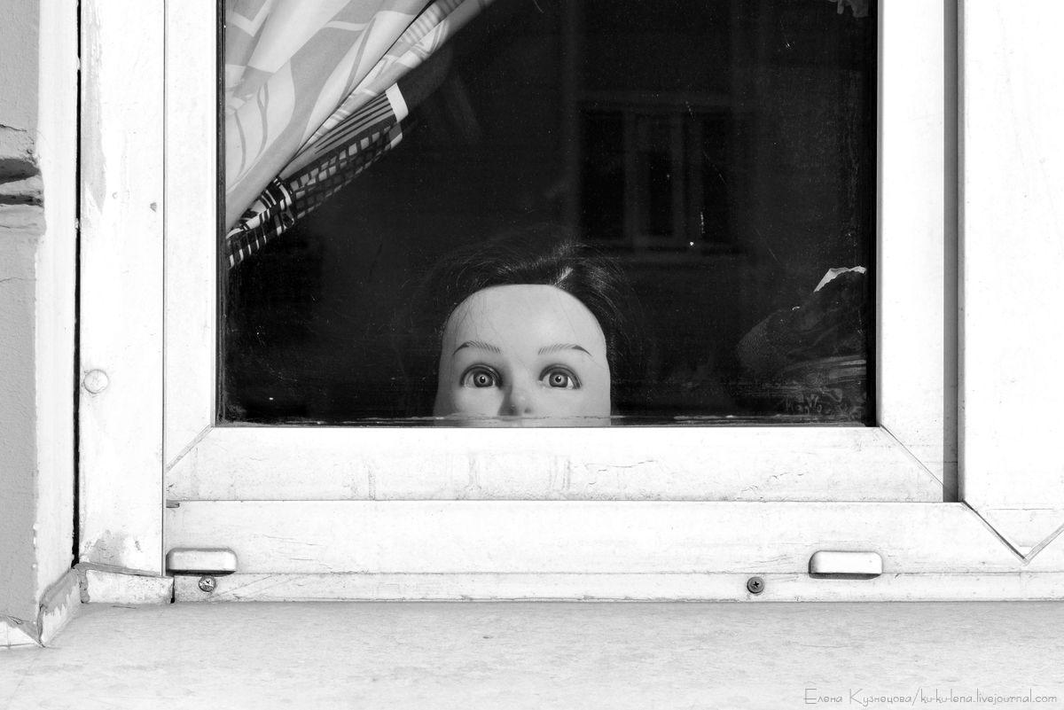 Взгляд в окно картинки
