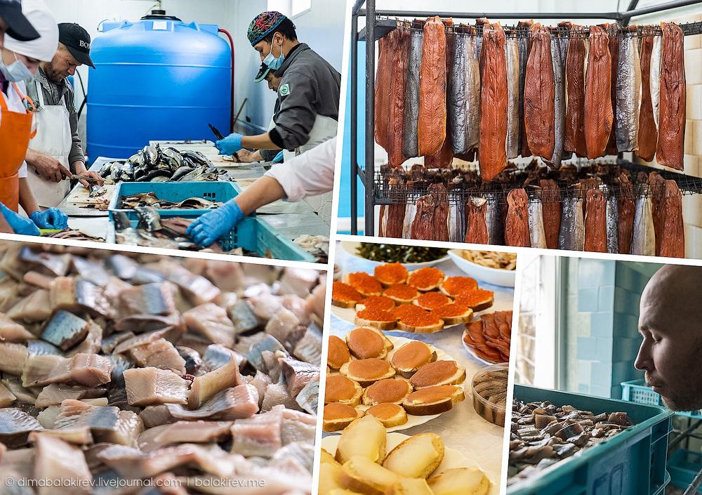 Рыбный завод в Магадане