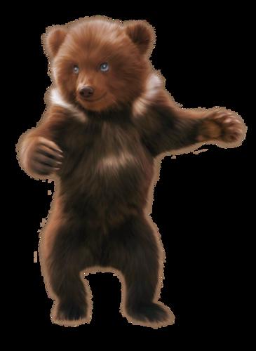 AdL_bears_el04.png