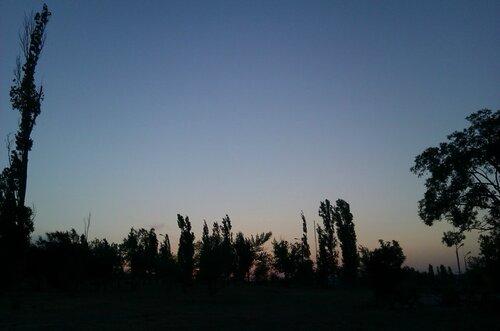 IMAG6357.jpg