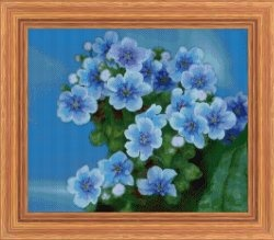 Журнал Forget-Me-Not