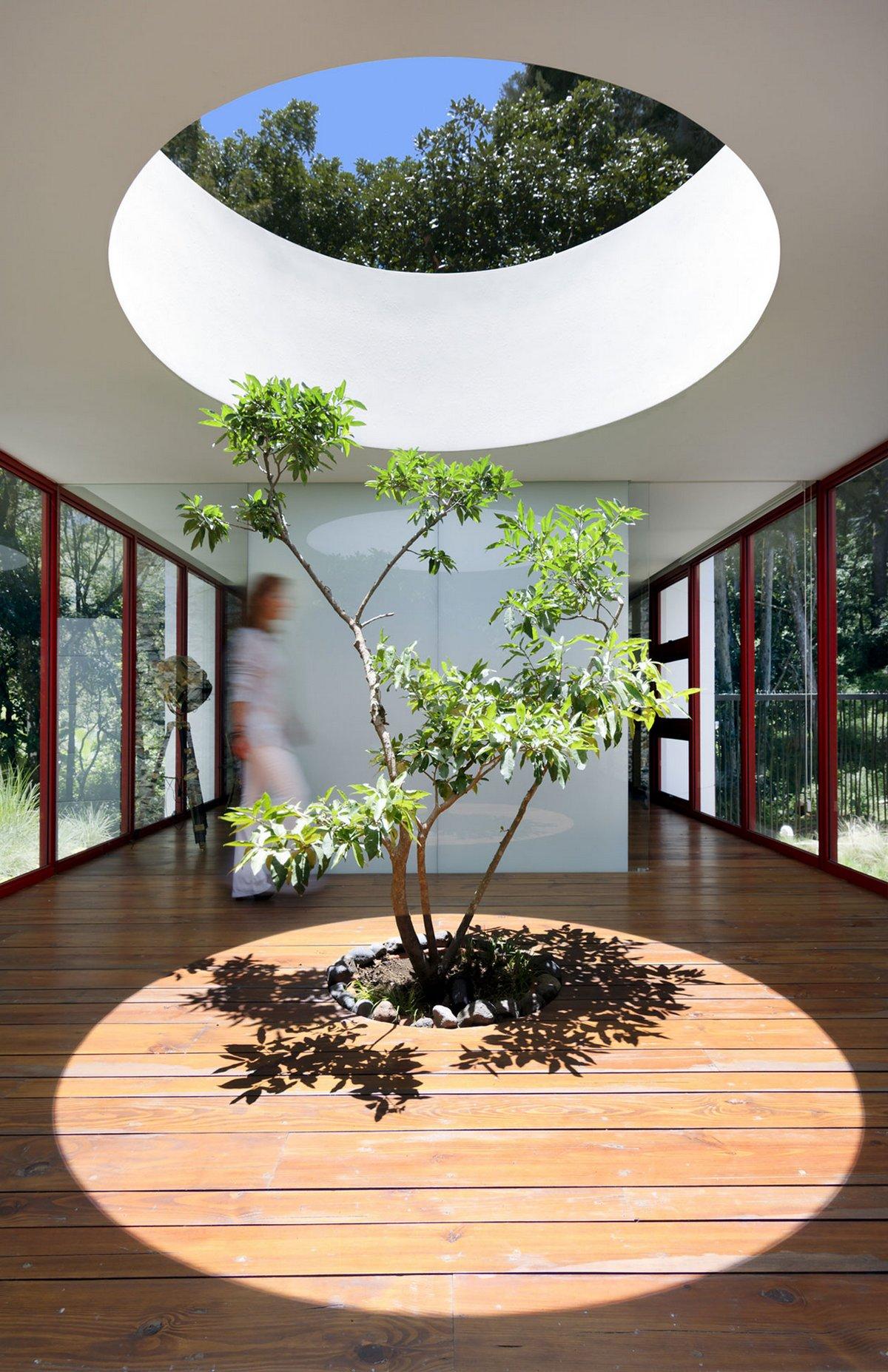 Casa Chinkara, Solis Colomer Arquitectos, частный дом в Гватемале, обзор частного дома, обзоры особняков, красивые дома фото, лучшие частные дома