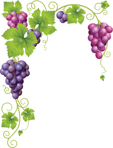 виноград (30).png