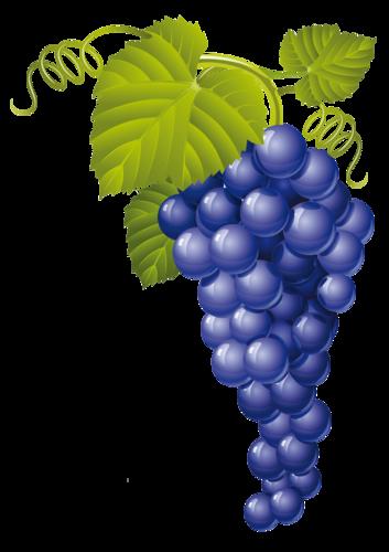 виноград (38).png