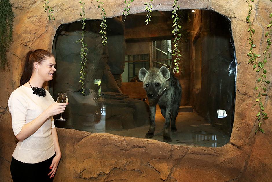 Зоопарк 'Семь звёзд'