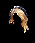 hair21.png