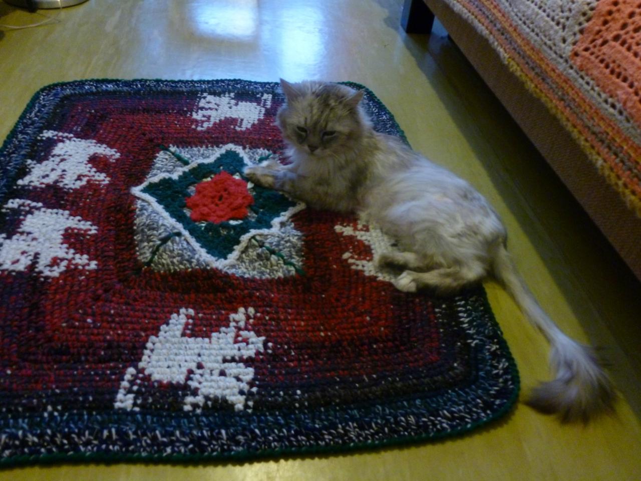Maroosya Хосе на ковре с котятками