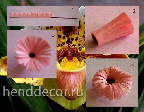Цветок орхидеи в технике квиллинг
