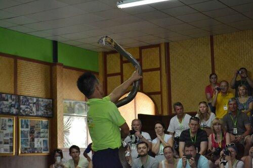 Шоу змей на Пхукете
