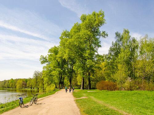 Пейзаж с велосипедами ! (парк Кузьминки, Москва)