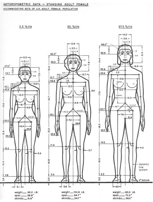 The Measure of Man, Henry Dreyfuss.jpg