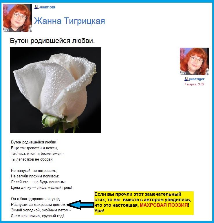 Тигрицкая Жанна и зачистки в Крыму, Стихи, бутон