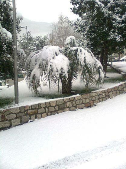Будва в снегу