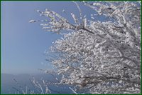 http://img-fotki.yandex.ru/get/17893/15842935.4c/0_c63b0_f694008e_orig.jpg