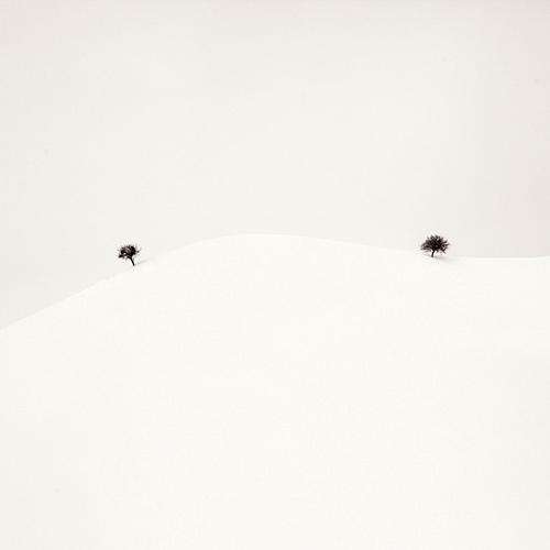 Фотограф Ebru Sidar. Белое безмолвие в фотосете `White story`.