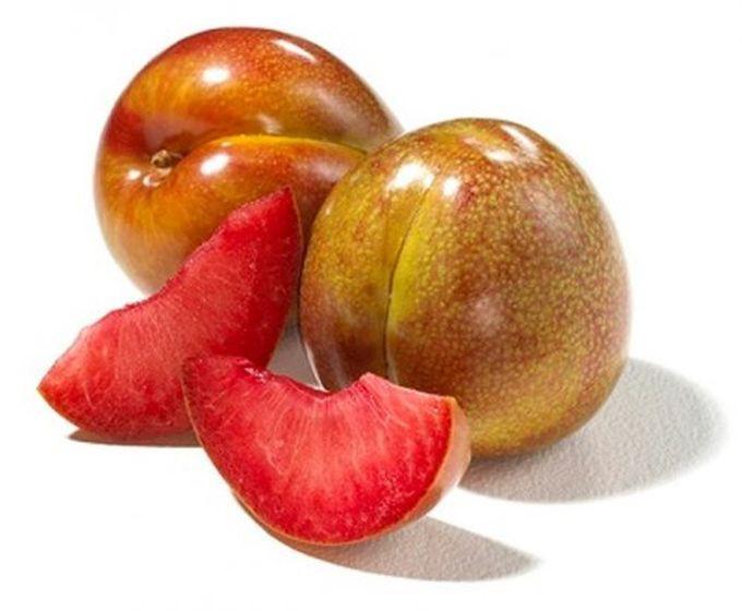 Грейпл — гибрид винограда и яблони