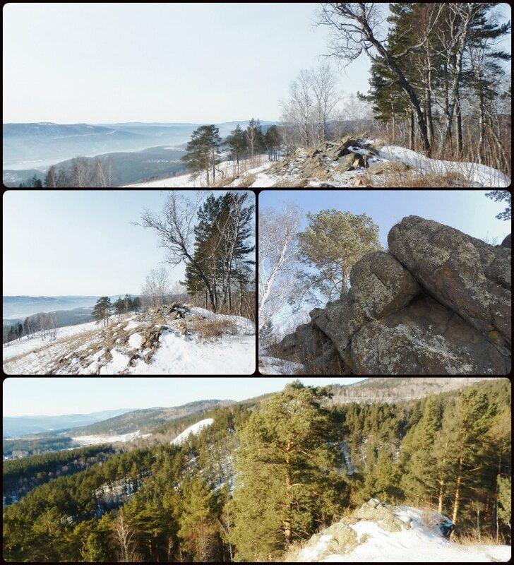 Лесной коллаж (932x1024).jpg