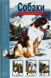 Книга Собаки. Школьный путеводитель
