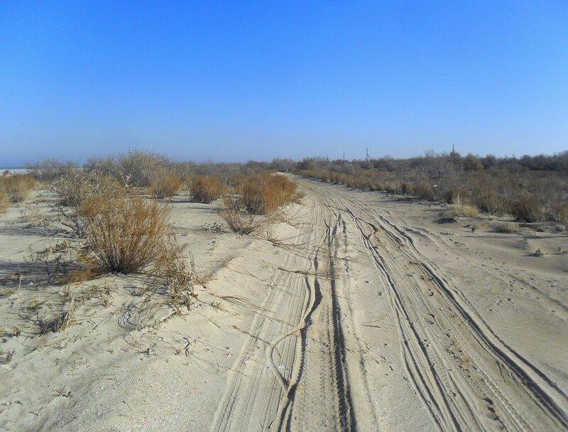 След на дороге песчаной... SAM_4540.JPG