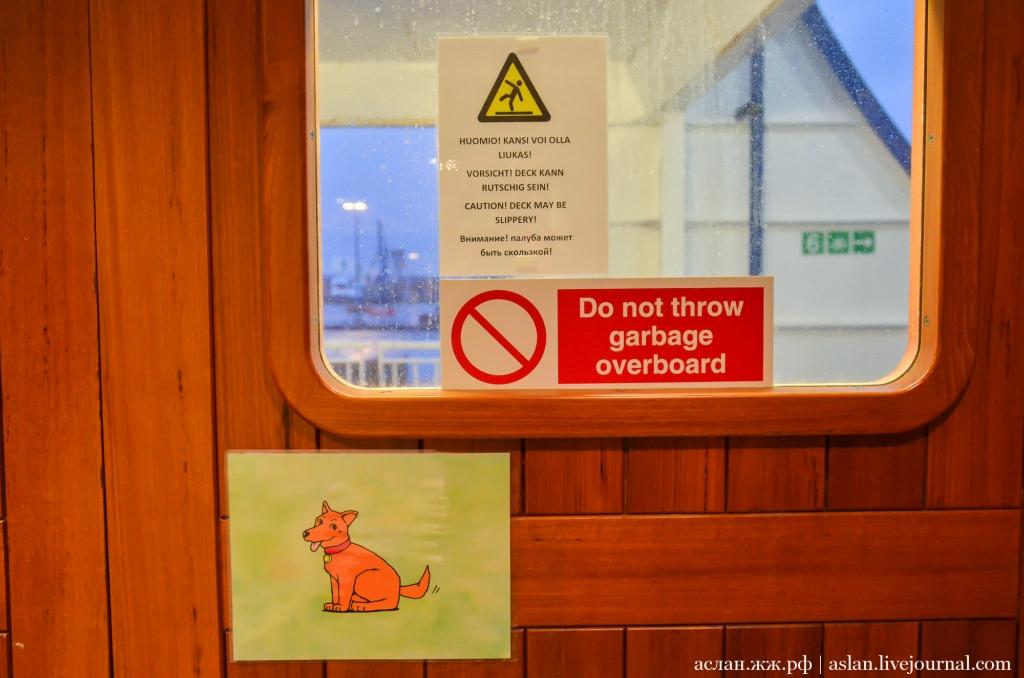 Куда собаки ходят в туалет на пароме