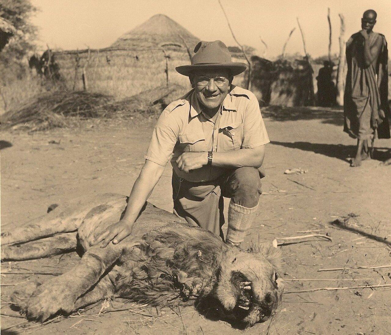 29. Львица и великий охотник