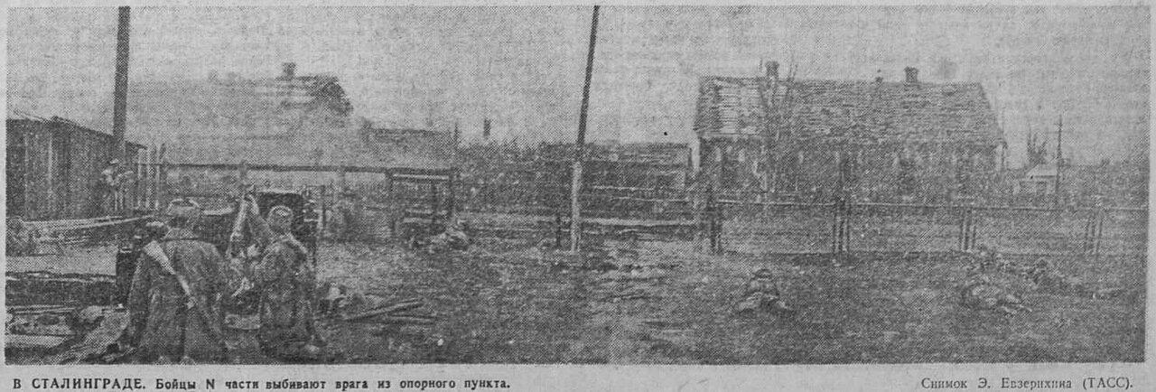 как русские немцев били, потери немцев на Восточном фронте, русский дух, Сталинградская битва