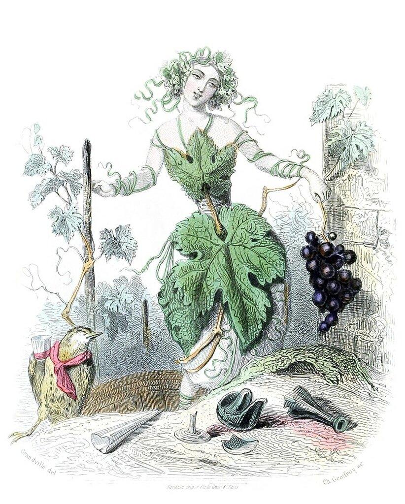 Jean-Jacques Grandville, from Les fleurs animées (animate flowers) vol. 2, collective work, Paris, 1867.jpg