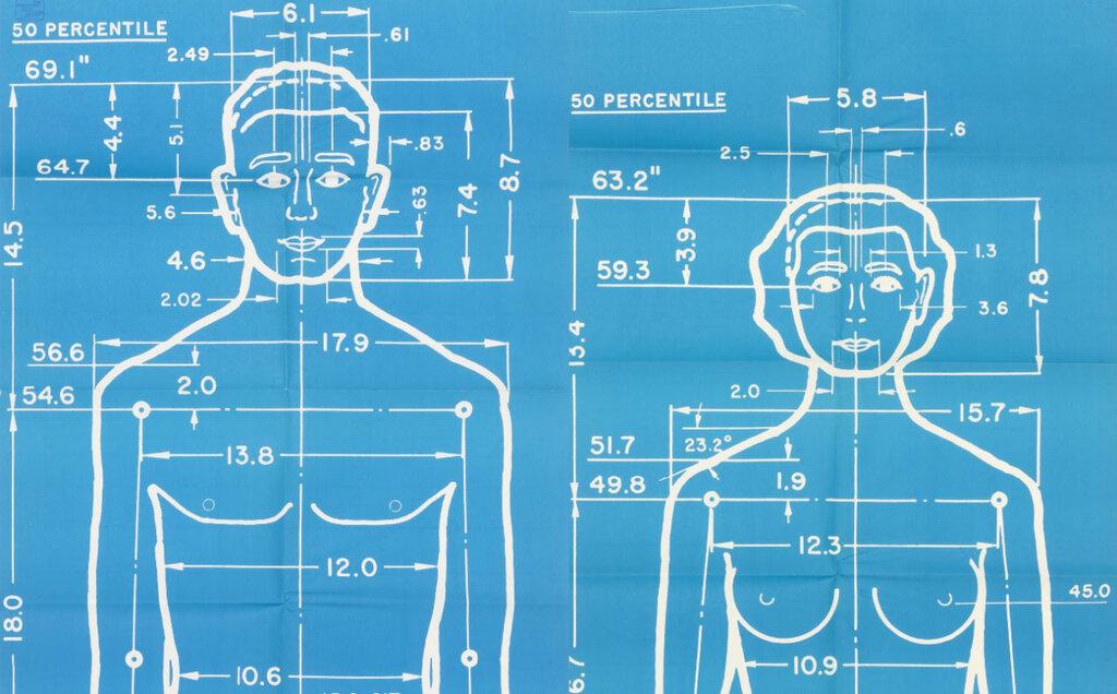 The Measure of Man, Henry Dreyfuss2805.jpg