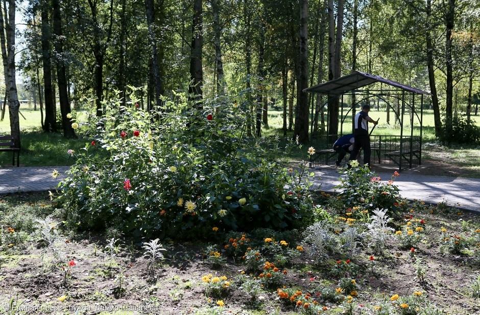 В Краснозаводске благоустраивают парковую зону