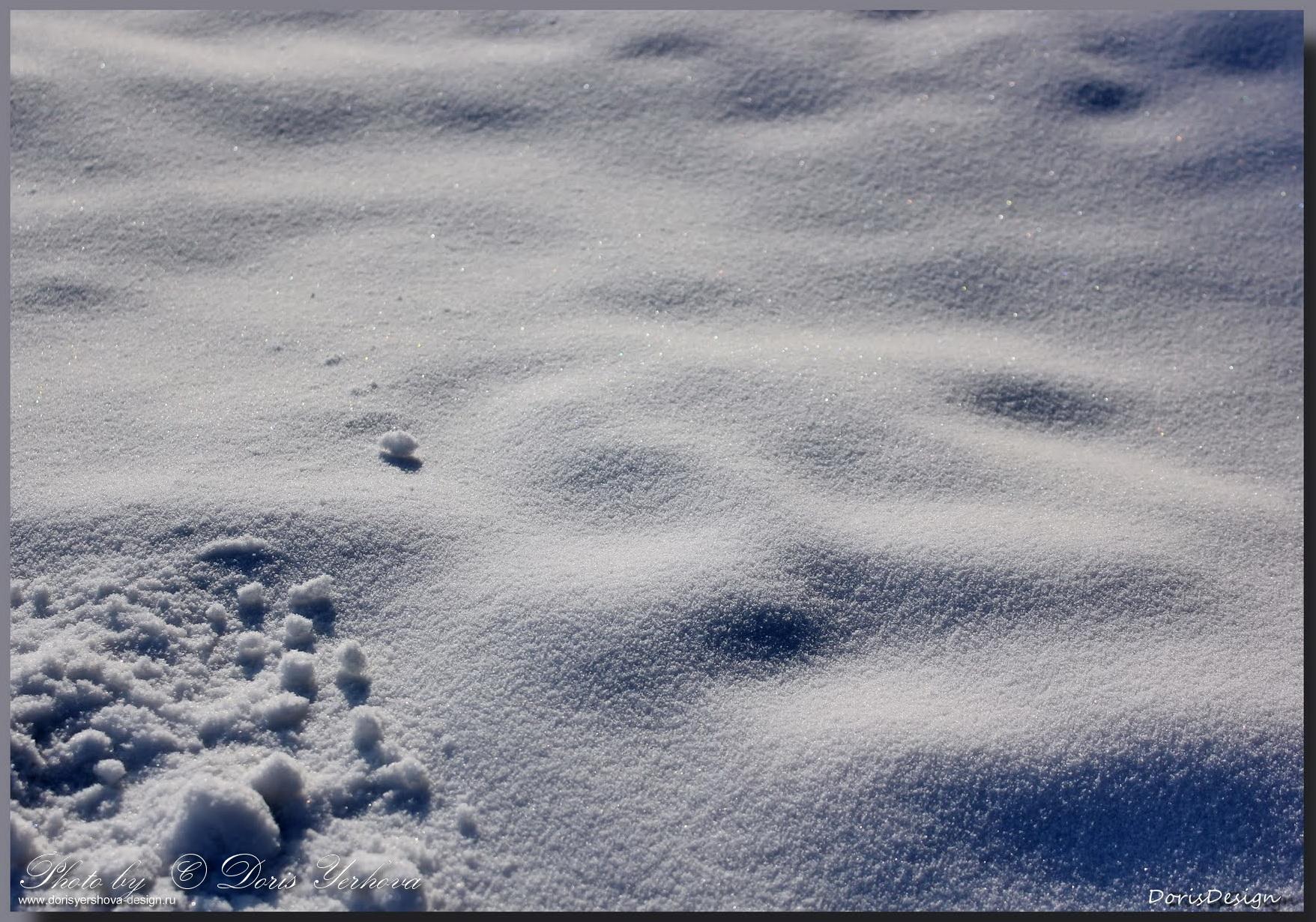 Тени на снегу. Фото - © Дорис Ершова