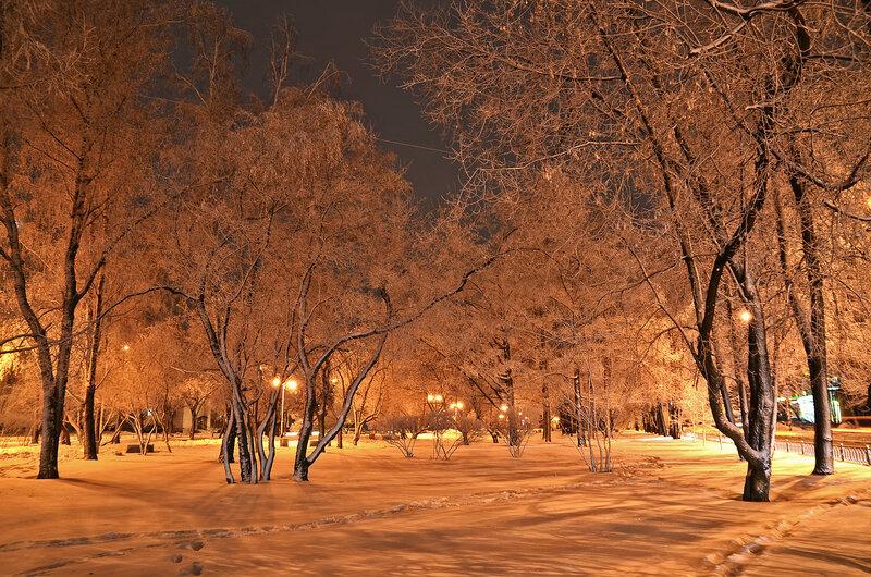 Вечер в зимнем парке.