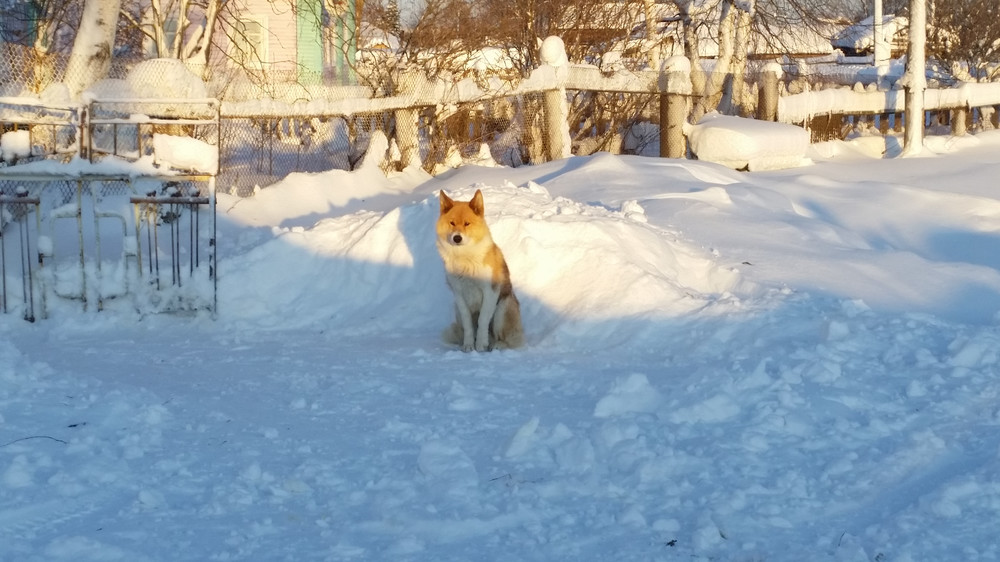 https://img-fotki.yandex.ru/get/17911/2820153.9d/0_10227d_ef4f6a7c_orig.jpg