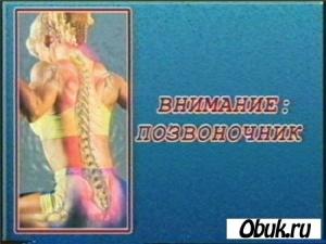 Книга Позвоночник: массаж, упражнения, травы, правильная осанка
