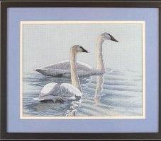 Журнал Graceful swans
