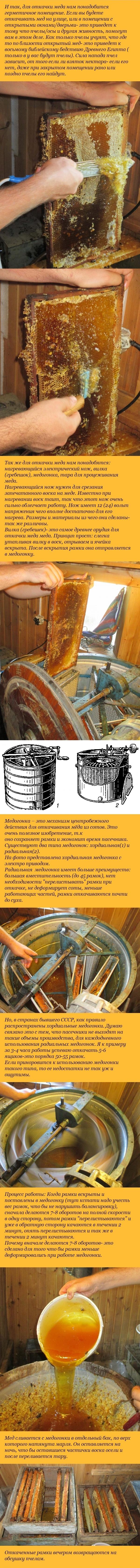 как откачивают мед из рамок
