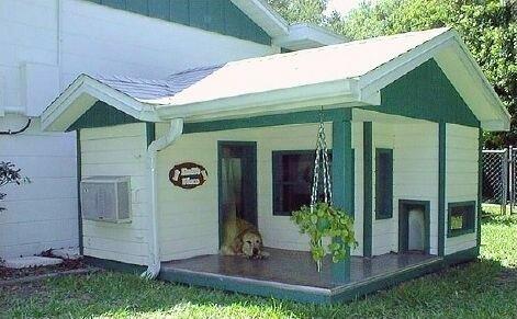 Необычные домики для собак