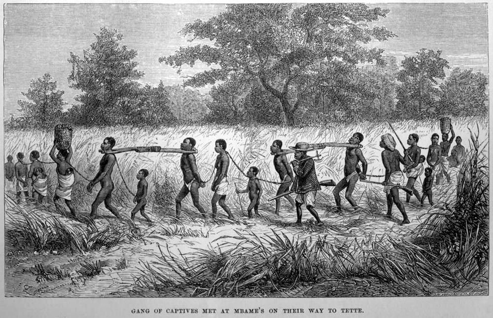 Колонна связанных африканцев под вооруженной охраной (Центральная Африка, 1861 год)