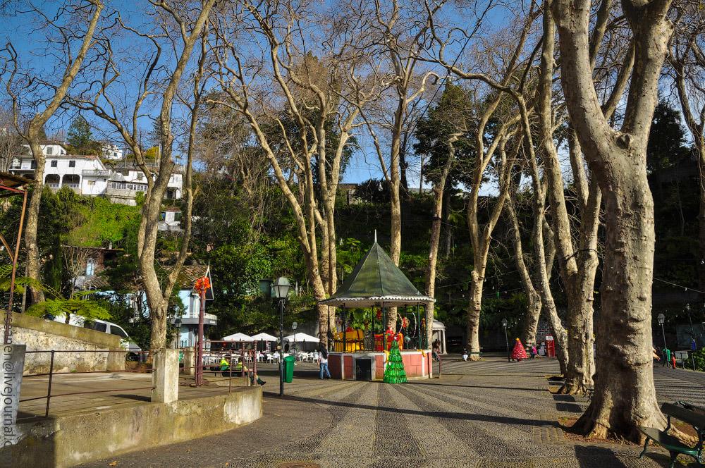 Madeira-Garten-(7).jpg