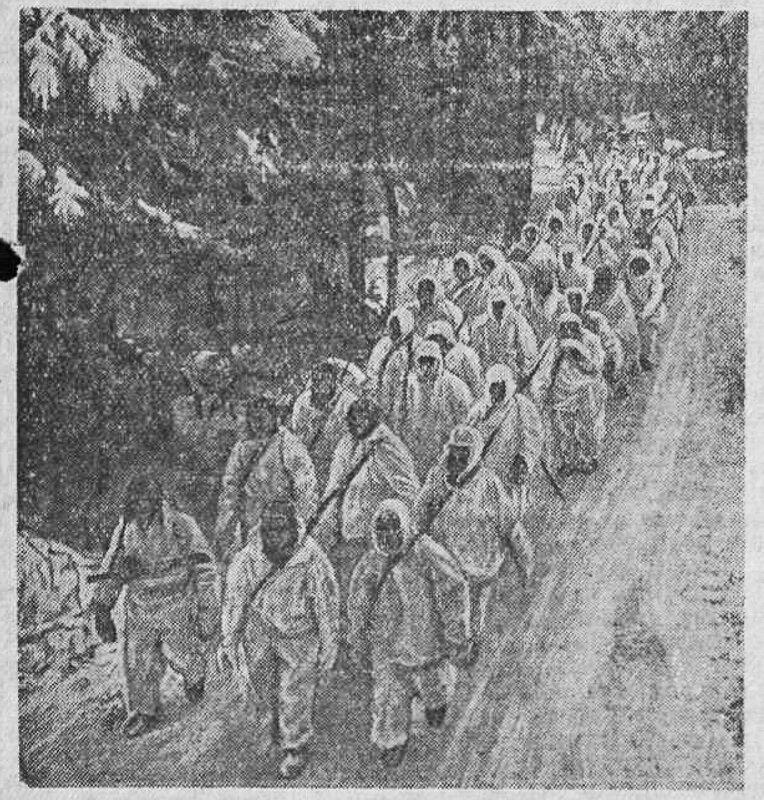 «Красная звезда», 8 февраля 1942 года, как русские немцев били, потери немцев на Восточном фронте, русский дух, немецкие солдаты о русских