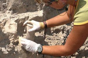В Унгенском районе археологи обнаружили ценную находку