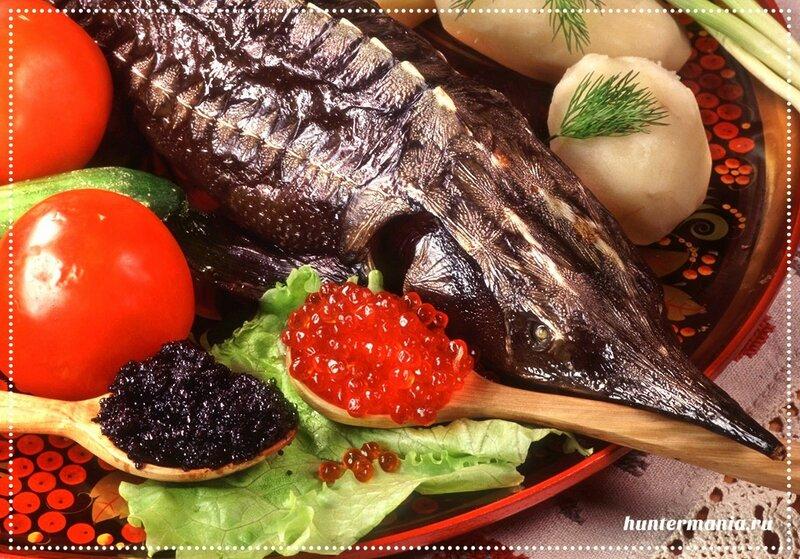 Рыба и морепродукты (полезные советы)