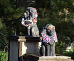 Львы города Медфорда