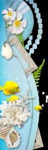 морские бордюры