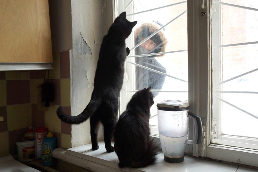 Подглядывающий на кухне