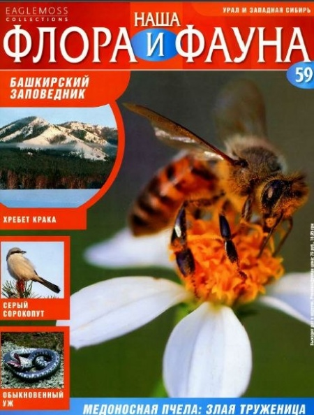 Книга Журнал: Наша флора и фауна №59 (2014 )
