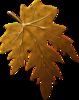 Для Осени наборы