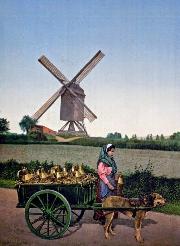 Milkseller, Brussels, Belgium, ca. 1890-1900.jpg